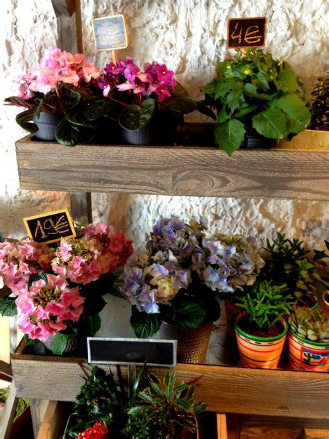 French fashion and trends: Plants & flowers for my Paris