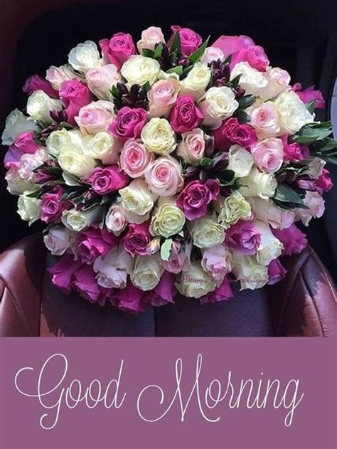 Pin by Nilesh Manore on Beautiful Blooms | Good morning