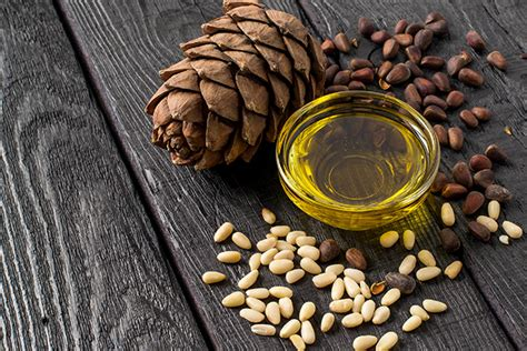 Pine seed oil – sources, health benefits, nutrients, uses