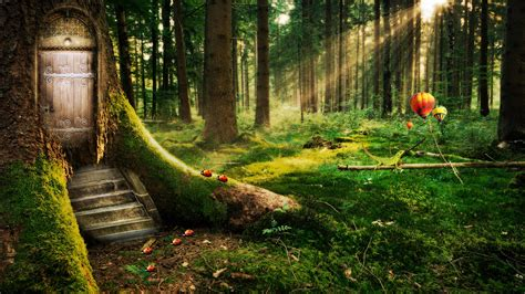 Enchanted Forest Wallpapers | HD Wallpapers | ID #11925