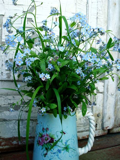 91 best Forget-me-not Bouquet - No me olvides images on