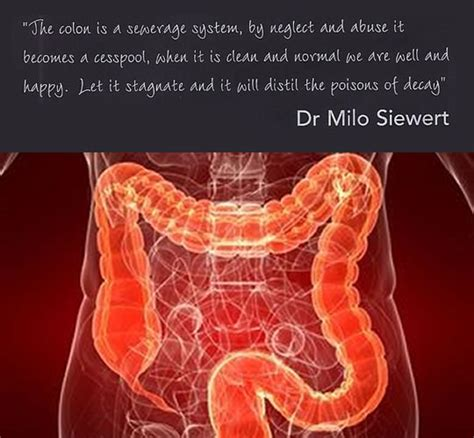 Colonic Hydrotherapy - Body and Face Options - Aesthetic