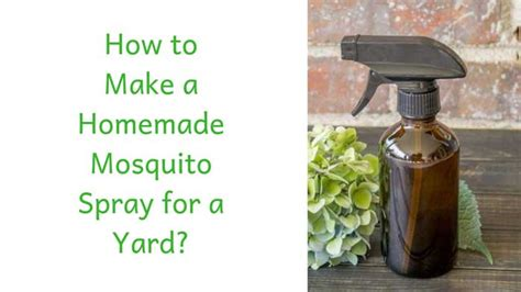 How to Make a Homemade Mosquito Spray for Yard?