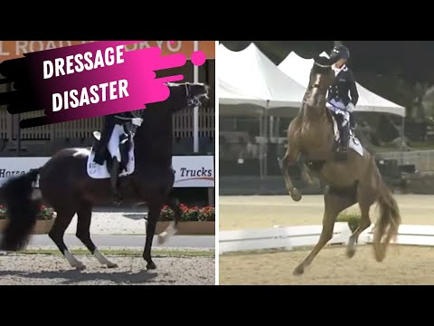 Nicola Wilson's simple show jumping exercise that gets result