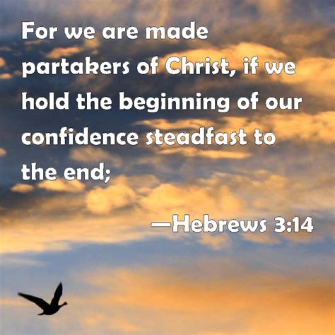 Hebrews 3:14 For we are made partakers of Christ, if we