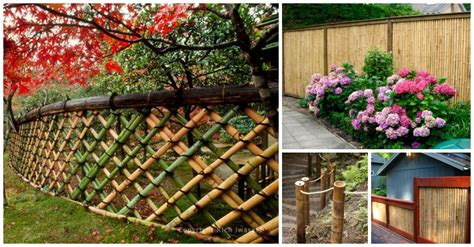 Take a Peek at the Most Beautiful Bamboo Fences