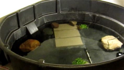 300 gallon Snapping turtle cage setup - YouTube