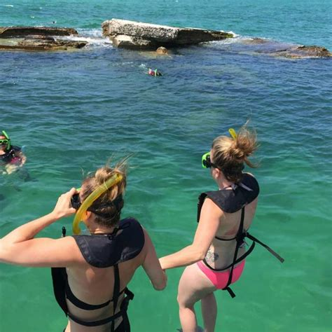 Great Diving Destinations | Visit St Petersburg Clearwater