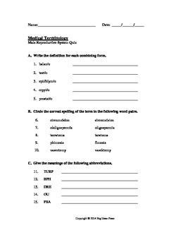 Medical Terminology Quiz: Male Reproductive System